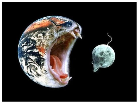 cat_earth_eating_mouse_moon-7517